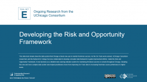 Developing the risk and opportunity framework cover image